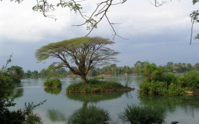Un reportage édifiant de ARTE sur le Laos et les investissements chinois.